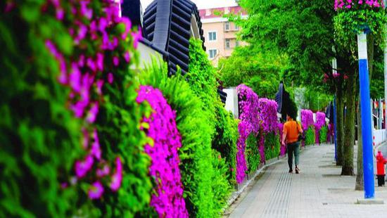 上海闵行最美围墙走红 成街头亮丽风景线