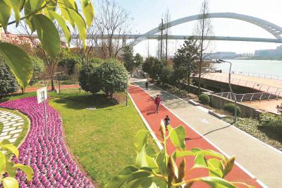 黄浦滨江沿线已建成10座主题小花园 绿化面积12万㎡