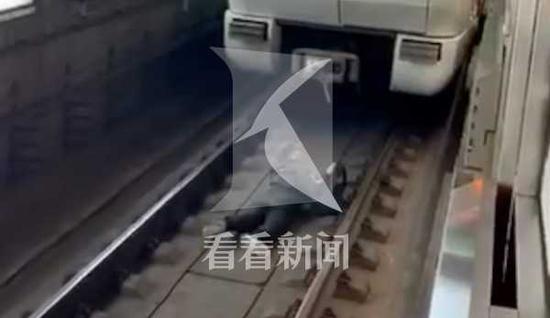 男子酒后进入地铁轨道影响列车运营5分钟 被行拘10日