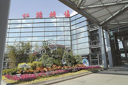 虹桥机场进博会绿化景观