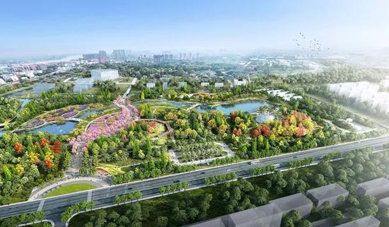沪今年将建新建绿地1200公顷 人均公园绿地将达8.5㎡