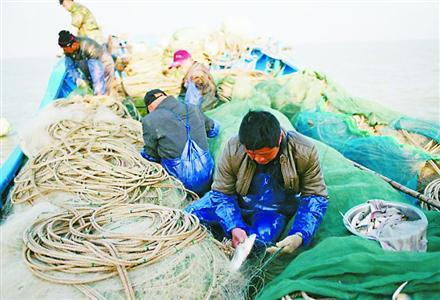 渔民正在捕捞长江刀鱼?!?                  张志豪 摄
