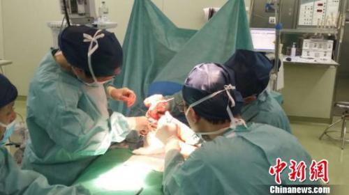 昨天,近十个小时的手术,上海的专家为孩子恢复了部分功能。 严晓慧 摄