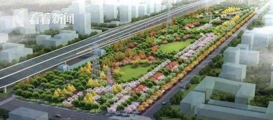 徐汇将再添一超大绿地 桂江路樱花大道三期将建成
