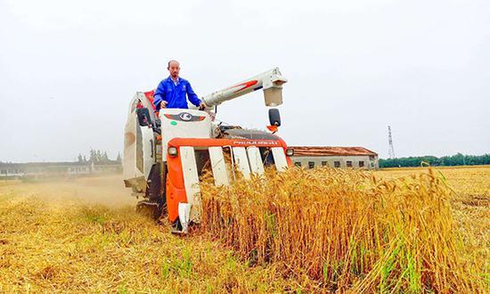 李春风在自家农场打理稻谷。
