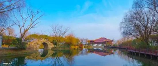 你知道吗?泖港镇里还有个中国最美乡村——黄桥村。