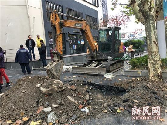 图片说明:挖掘机现场作业 图片均为新民晚报新民网陈浩摄