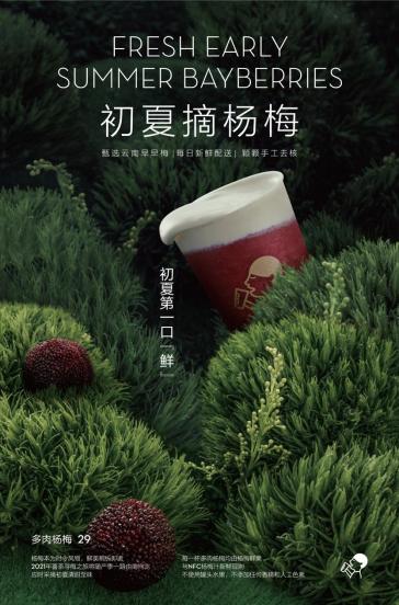 喜茶多肉杨梅正式回归 供应链保障从采摘到门店不超三天