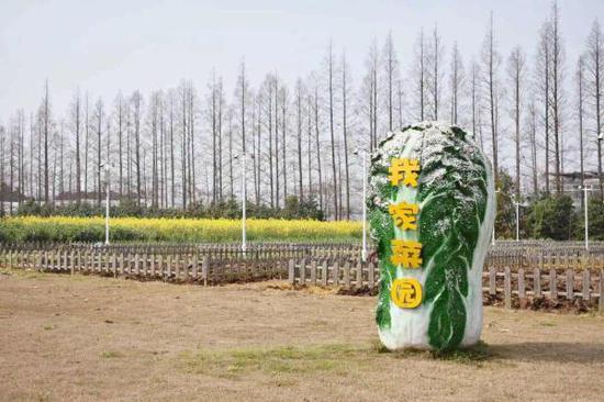 长兴岛郊野公园景色 崇明区供图