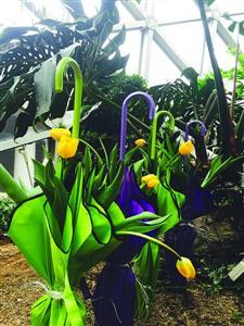 花展上的伞形花艺呈现花农打着伞遮阳劳作的场景 辰山植物园供图