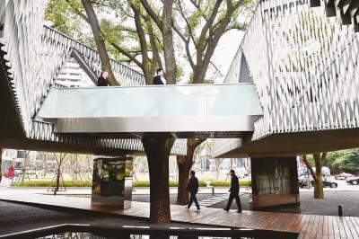 与六棵老香樟树交错共生的办公楼。本报记者陈龙摄