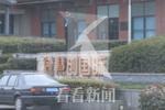 上海一保安深夜被撞身亡 驾车司机涉嫌醉驾