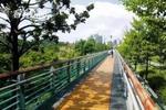 5公里绿道试点成功 普陀今年将再添7公里景观健身道