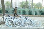 多家共享单车主动挂钩征信 不文明行为定期公示