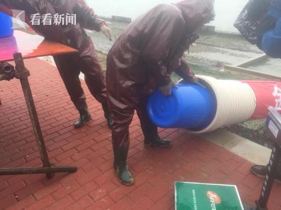 上海金泽水库放鱼一万尾 水体清道夫稳定水质