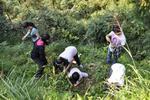 市民为包粽子采粽叶 掉进沼气坑两小时浑身发抖