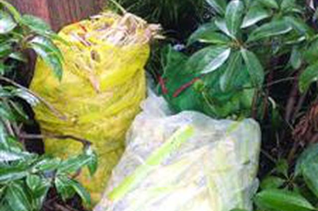 小区垃圾分类不达标 为拿补贴志愿者找垃圾凑数