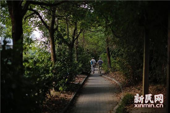 图片来源:新民晚报新民网记者 萧君玮 摄影