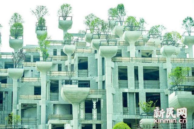 上海苏州河边庞大建筑群成网红 网友称似空中花园