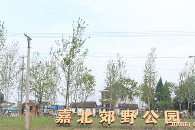 沪嘉北郊野公园或9月完工 秋光秋意秋天开园