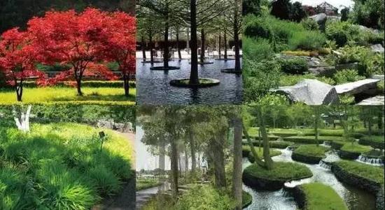 公园实景图