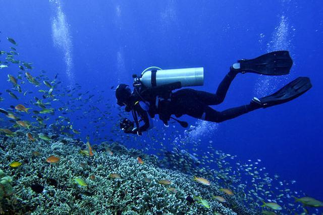 两上海潜水员水下遇难原因未明 相关部门正在调查