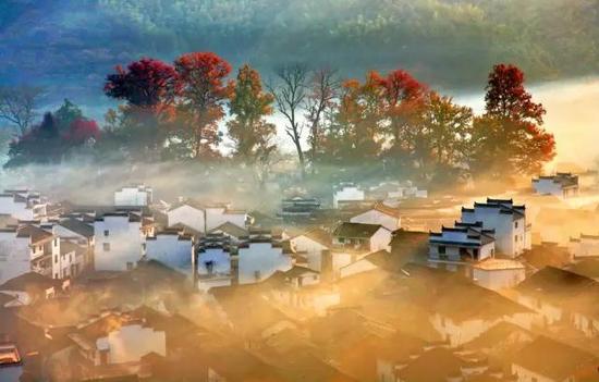 凛冬将至 去南国看一眼今年最后的深秋美景