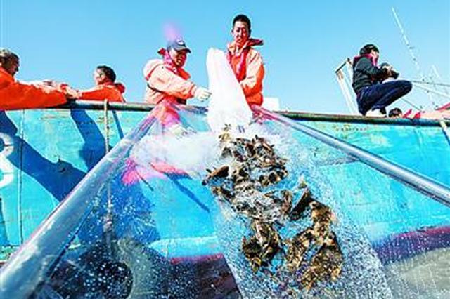 濒危物种增殖放流 近4万尾松江鲈鱼、胭脂鱼投身长江