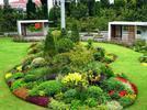 静安5个花坛花境公园