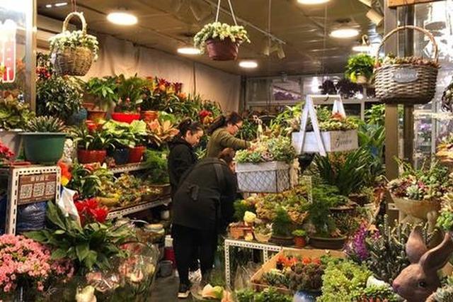 虹桥花卉市场生意火热 互联网难取代传统花市