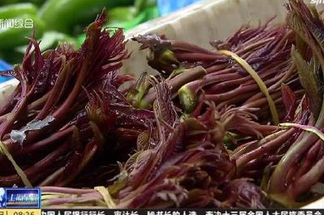 视频:上海香椿上市味美鲜嫩 最贵时120元/斤