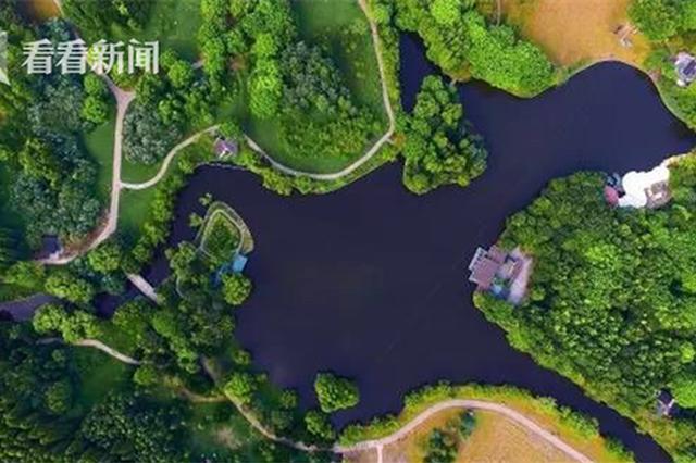 上海森林覆盖率16.2% 林地面积相当于46个黄浦区大小