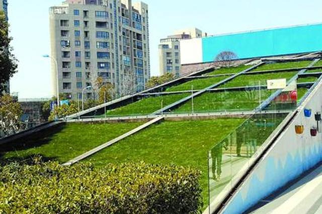 临港新城实行海绵化改造 百余项具体工程预计明年完工