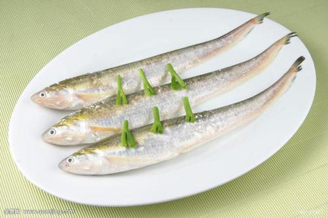 长江刀鱼产量低个头偏小 价格飙升至上万元