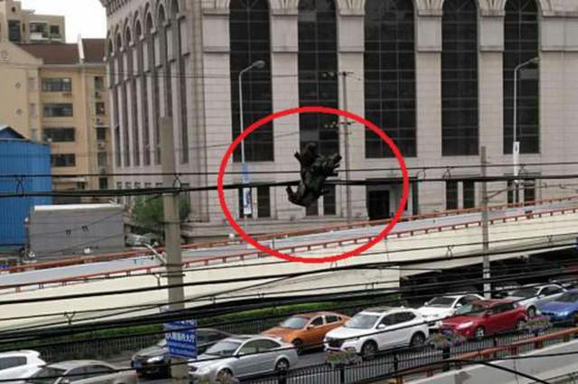 树桩吊在南北高架通讯线上达一周 至今无人认领