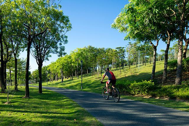上海195座公园延长开放 24小时开放公园增至73座