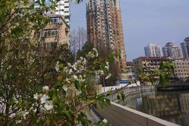 普陀宜川街道整治河道脏乱差 变成居民自家后花园