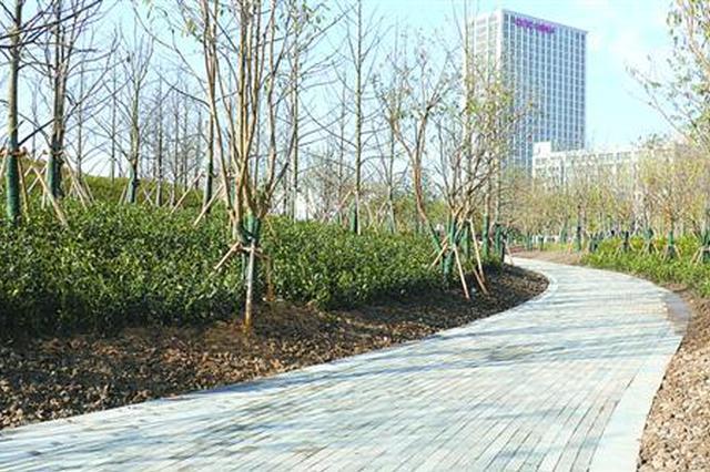桃浦中央绿地一期初步成型 绿地内建成市中心第二高山