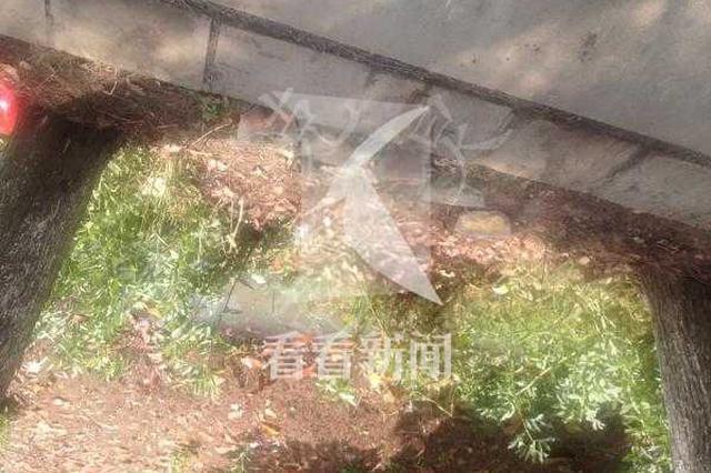 金山一轎車鄉間行駛疑車速過快 撞飛六旬男子當場身亡