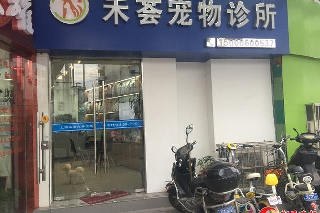 图说:涉事宠物诊所新民晚报记者罗水元摄(下同)