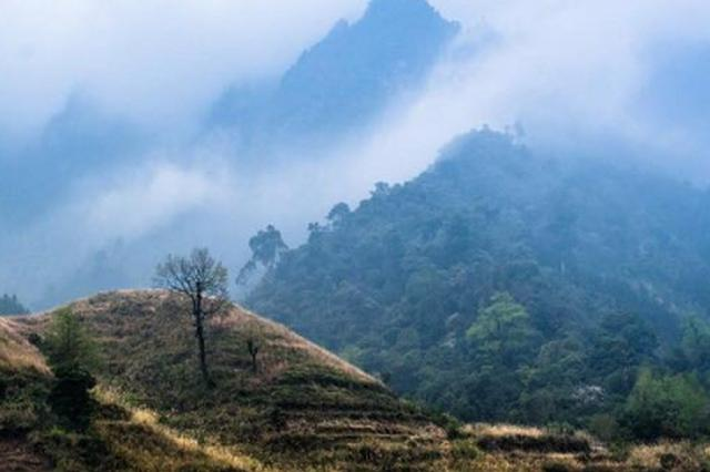 25名上海游客浙江山中被困 网上自发组织徒步旅游