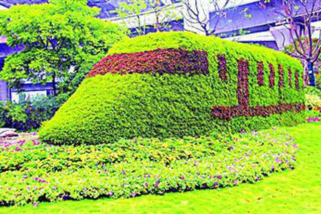 进口博览会周边将勾画绚烂秋景 以红黄绿三色为主