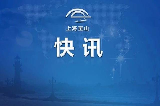 宝山2035总体规划草案公示 常住人口规模控制在210万