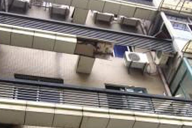 团伙利用底楼住户外出不锁窗 入室盗窃大量财物