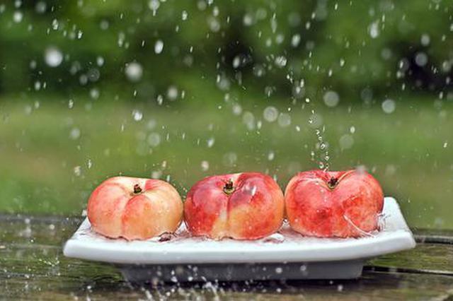 申城今年遇干黄梅 本地水果比往年更甜且更早上市