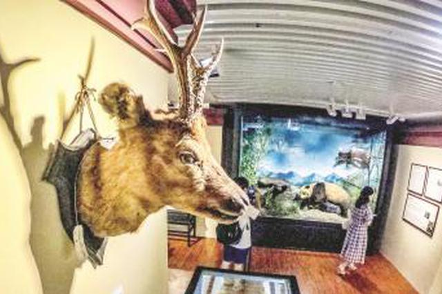 沪上三大博物馆联合特展 从世纪典藏看上海博物溯源