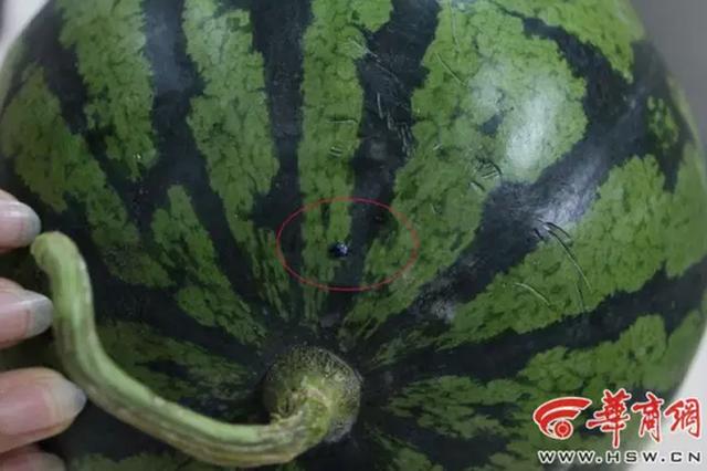 盘点盛夏最热9个谣言:桃子西瓜同吃被传要人命