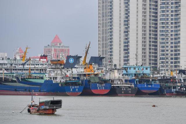 浦江19个轮渡站点今年全部更新升级