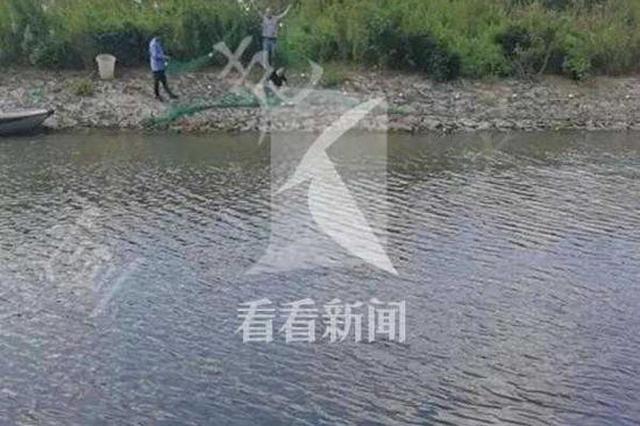 浦东多名儿童到河道里戏水游泳 13岁男童溺水身亡