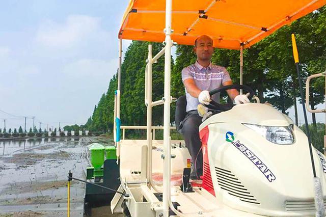男子城里工作十年回松江务农 如今成420亩土地农场主
